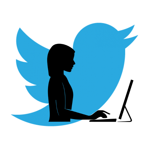 Twitter Logo with Silhouette of Womon Working on Computer